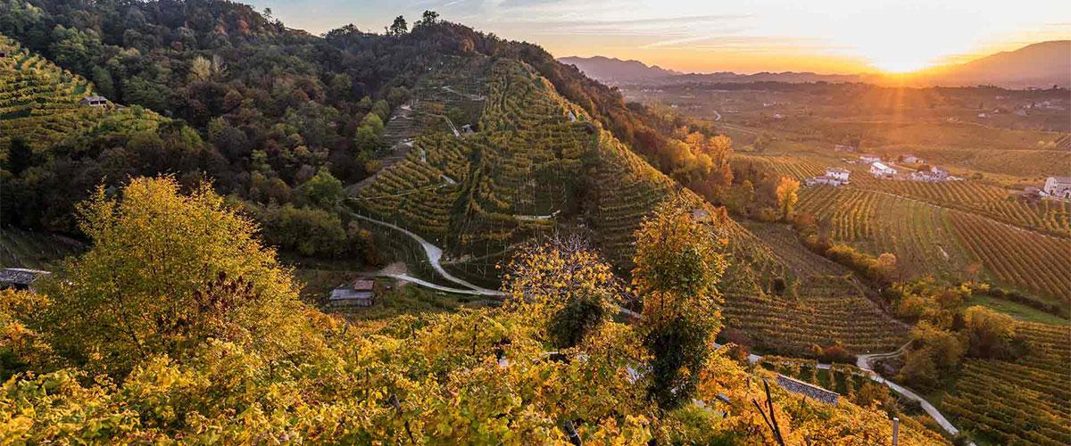 Un'immagine delle colline di Valdobbiadene